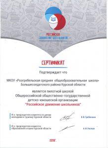 """Сертификат """"Российское движение школьников"""""""